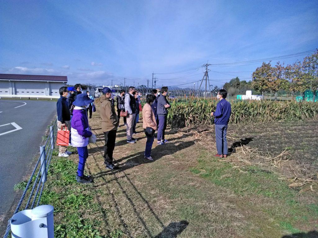 新規就農or農の雇用の写真